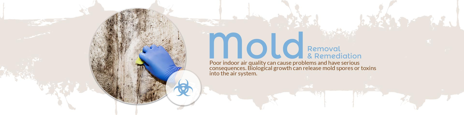 Mold Removal & Mold Remediation